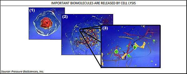 Pressure-BioSciences-Cell-Lysis