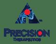 Precision Logo Transparent-1