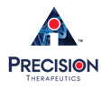 Precision Logo Transparent-1